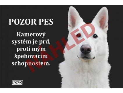 Výstražná vtipná samolepící cedule pozor pes - psí plemeno Bílý švýcarský ovčák