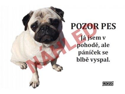 Výstražná vtipná cedule pozor pes - psí plemeno Mops béžový