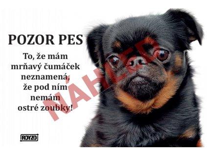 Výstražná vtipná cedule pozor pes - psí plemeno Grifonek brabantský