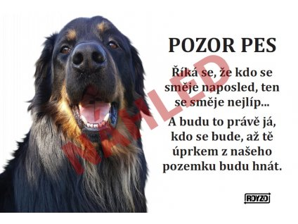 Výstražná vtipná samolepící cedule pozor pes - psí plemeno Hovawart