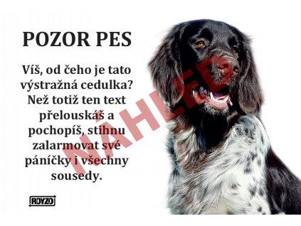 Výstražná vtipná cedule pozor pes - psí plemeno Německý dlouhosrstý ohař