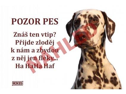 Výstražná vtipná samolepící cedule pozor pes - psí plemeno Dalmatin