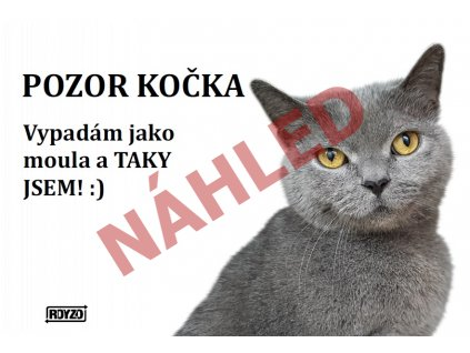 Výstražná vtipná samolepící cedule pozor kočka - Britská kočka