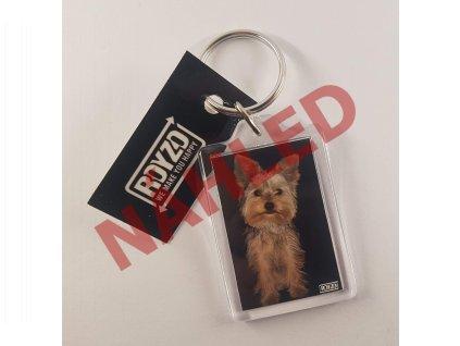 Yorkshire terrier krátkosrstý