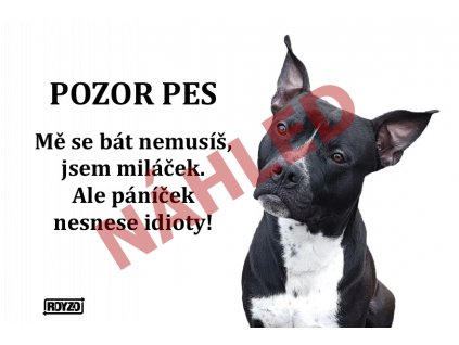 Výstražná vtipná samolepící cedule pozor pes - psí plemeno Americký pitbulteriér černý