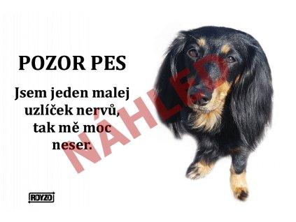 Výstražná vtipná samolepící cedule pozor pes - psí plemeno Jezevčík dlouhosrstý černý s pálením