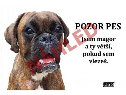 Výstražná vtipná samolepící cedule pozor pes - psí plemeno Německý boxer žíhaný