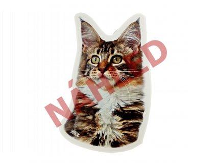 Samolepka Mainská mývalí kočka mramorovaná