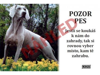 Výstražná vtipná samolepící cedule pozor pes - psí plemeno Výmarský ohař 1