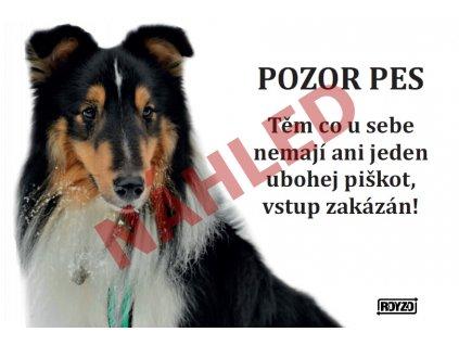 Výstražná vtipná cedule pozor pes - psí plemeno Sheltie