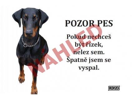 Výstražná vtipná samolepící cedule pozor pes - psí plemeno Dobrman