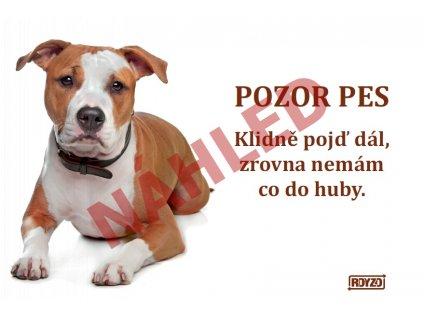 Výstražná vtipná samolepící cedule pozor pes - psí plemeno Staford
