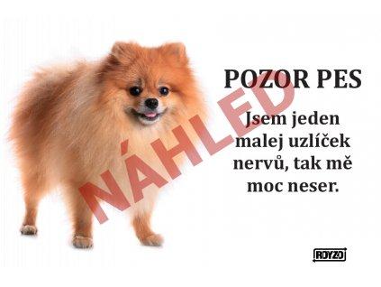 Výstražná vtipná samolepící cedule pozor pes - psí plemeno Špic Pomeranian