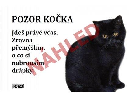 Výstražná vtipná samolepící cedule pozor kočka - Černá kočka