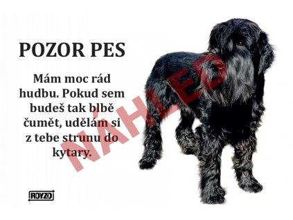 Výstražná vtipná cedule pozor pes - psí plemeno Knírač velký