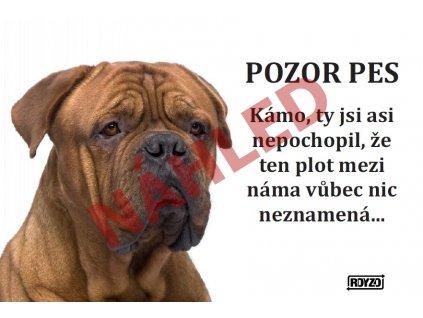 Výstražná vtipná cedule pozor pes - psí plemeno Bordeauxska doga