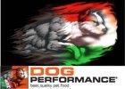 DOG PERFORMANCE