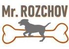 Mr.ROZCHOV