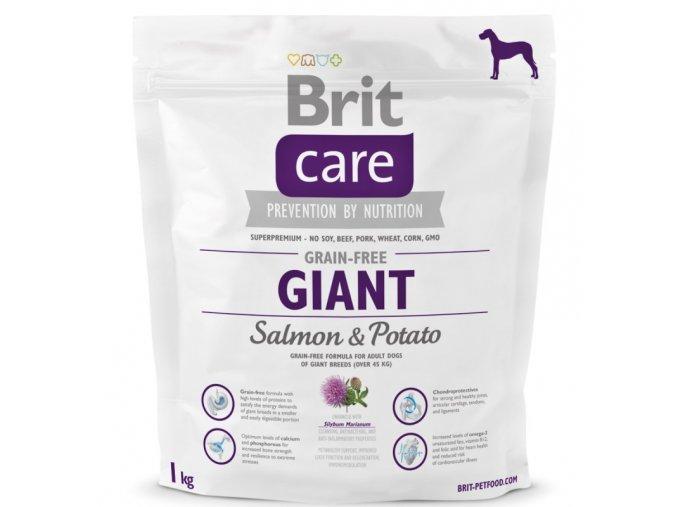 brit-care-grain-free-giant-salmon-potato-1kg