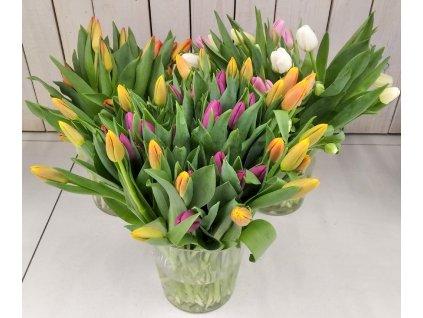 květinářství stodůlky (5)