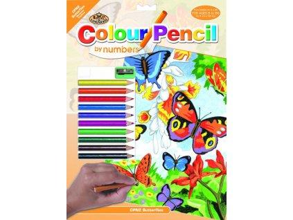 malovanie podla cisel pastelkami motyl (2)