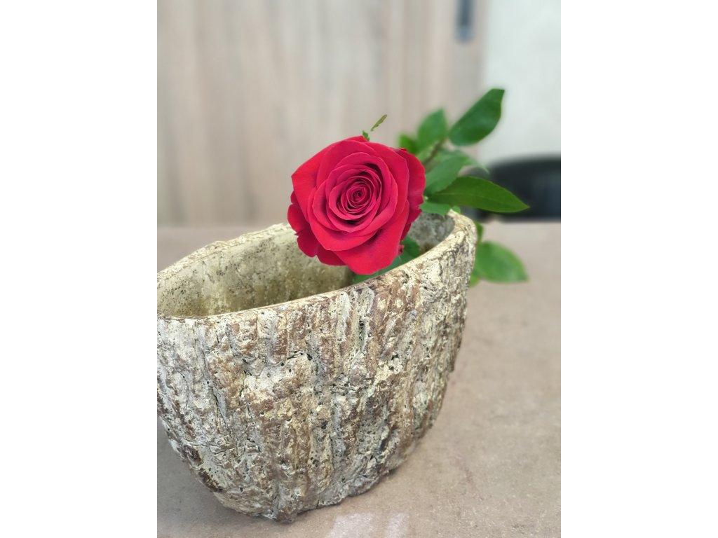 červena ruža