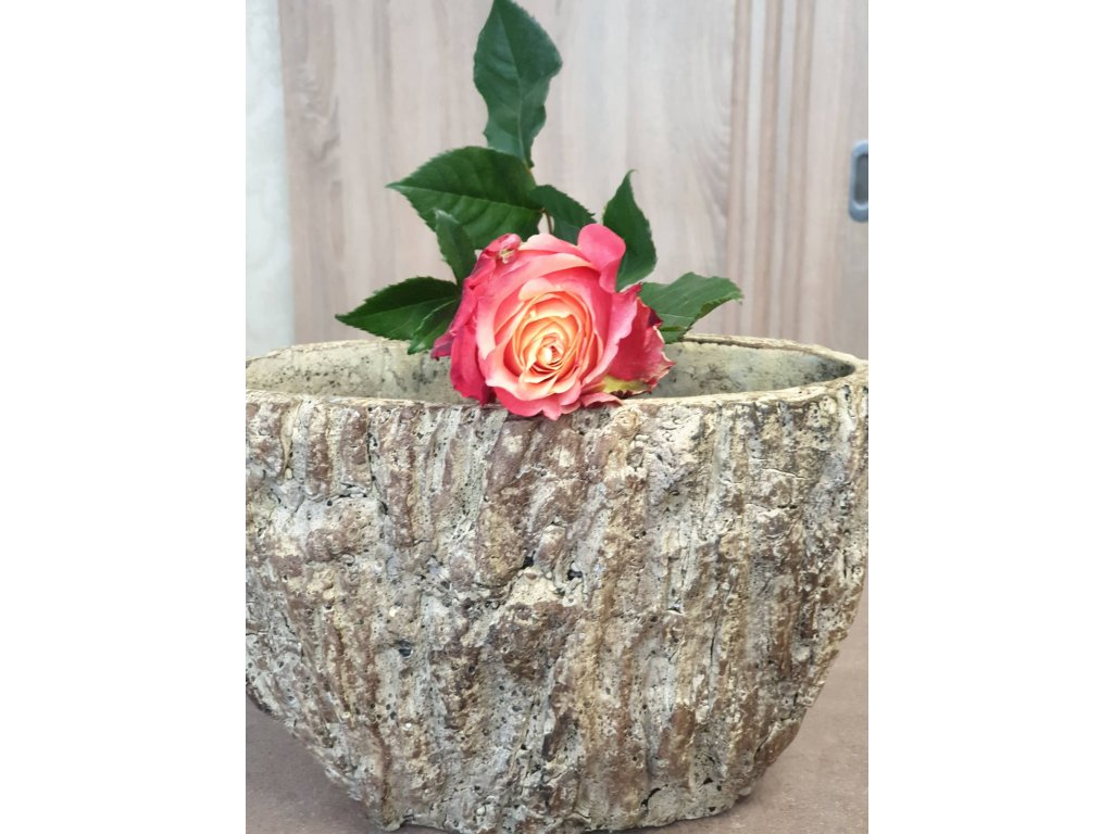 farebná ruža