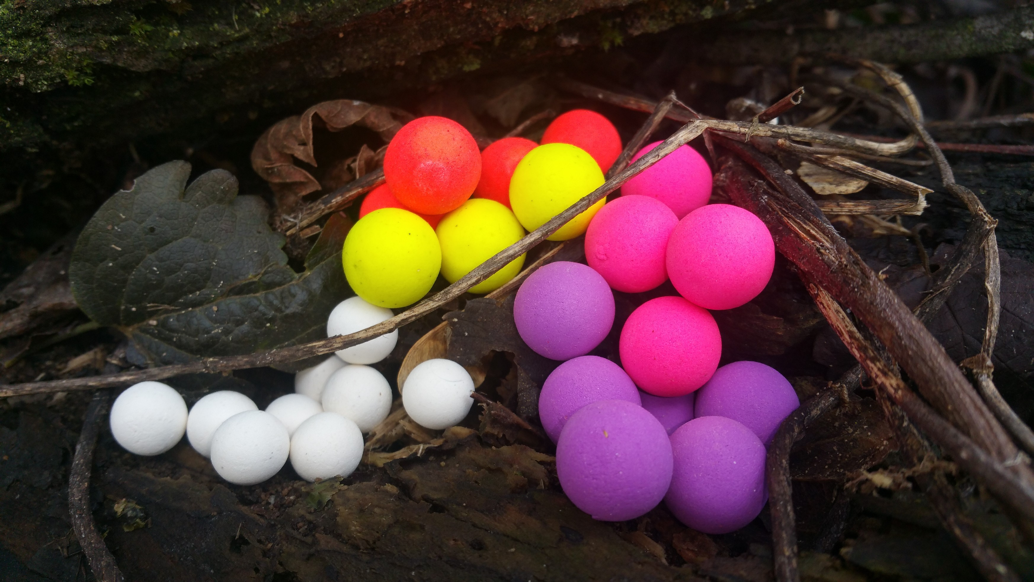Boilies pop up