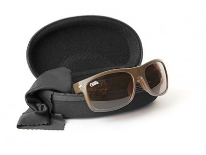 sunglasses brown frame and lens 2