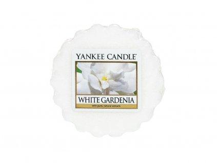 6605 6605 yankee candle vonny vosk white gardenia
