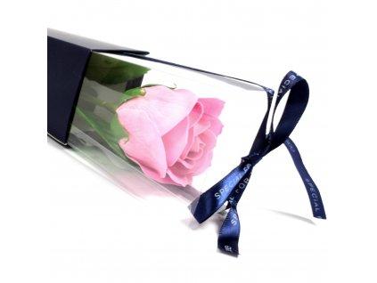 Mýdlová růže růžová 1 ks