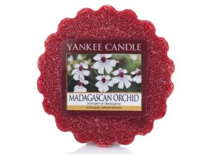 madagascan orchid vosk