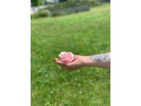 Mýdlové květy-Velké růže - Světle Růžová 1 ks