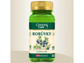 Borůvkový extrakt 40 mg, 90 tablet