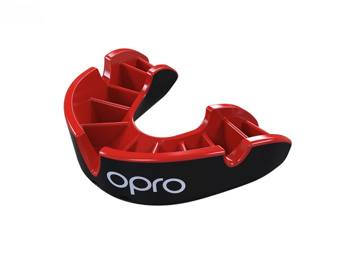 Silver Mouthguard Red Fins Black Shell.49.Flipped