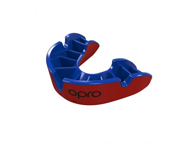 Silver Mouthguard Red Blue Fins.490