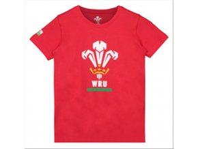 dětské tričko Wales