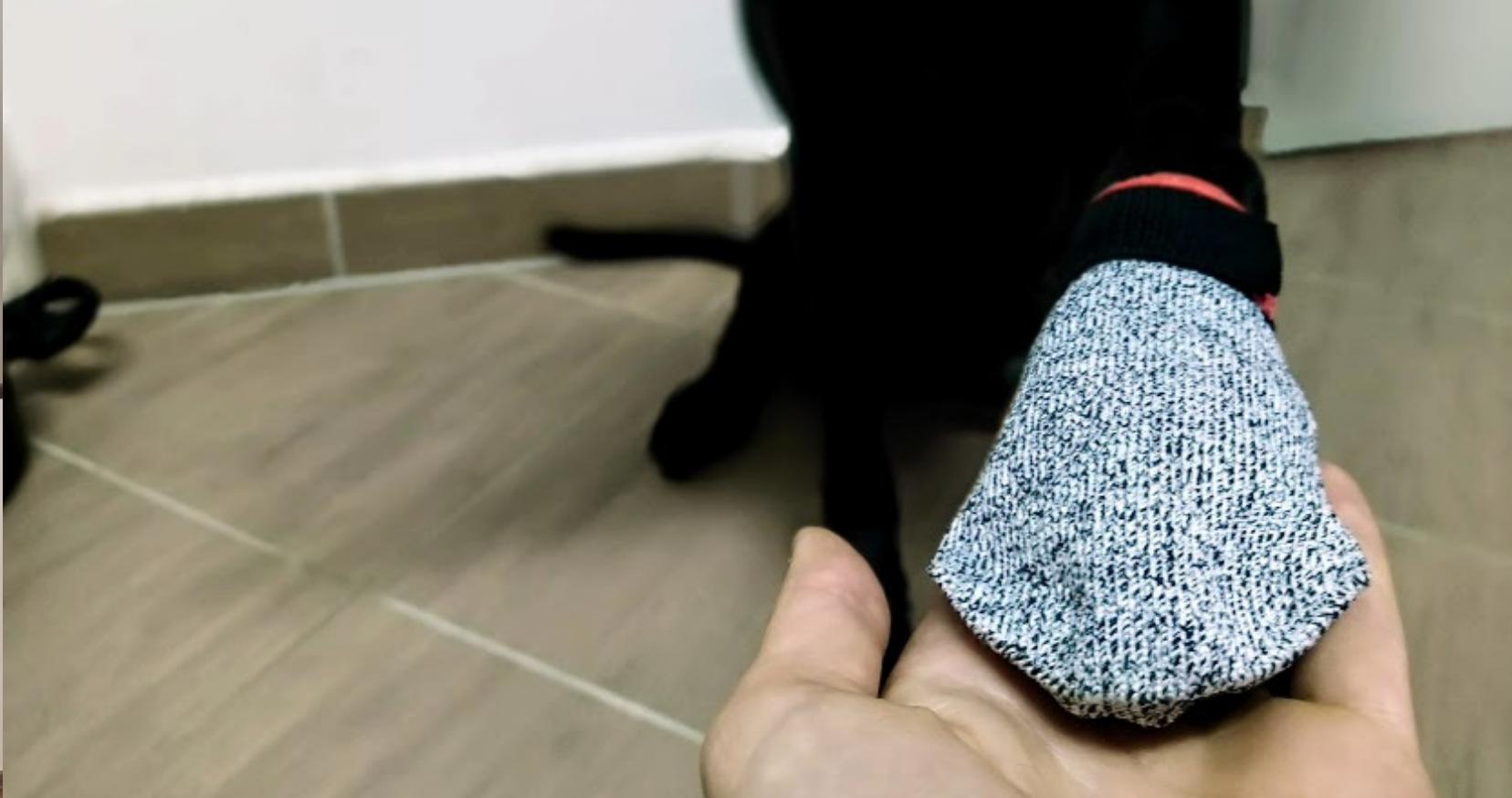 Botičky pro psy V.I.P. dogwear - recenze