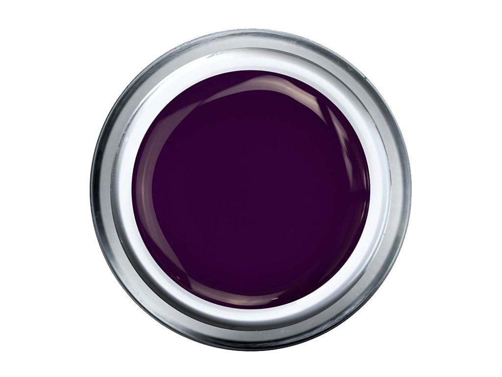 russian violet nova
