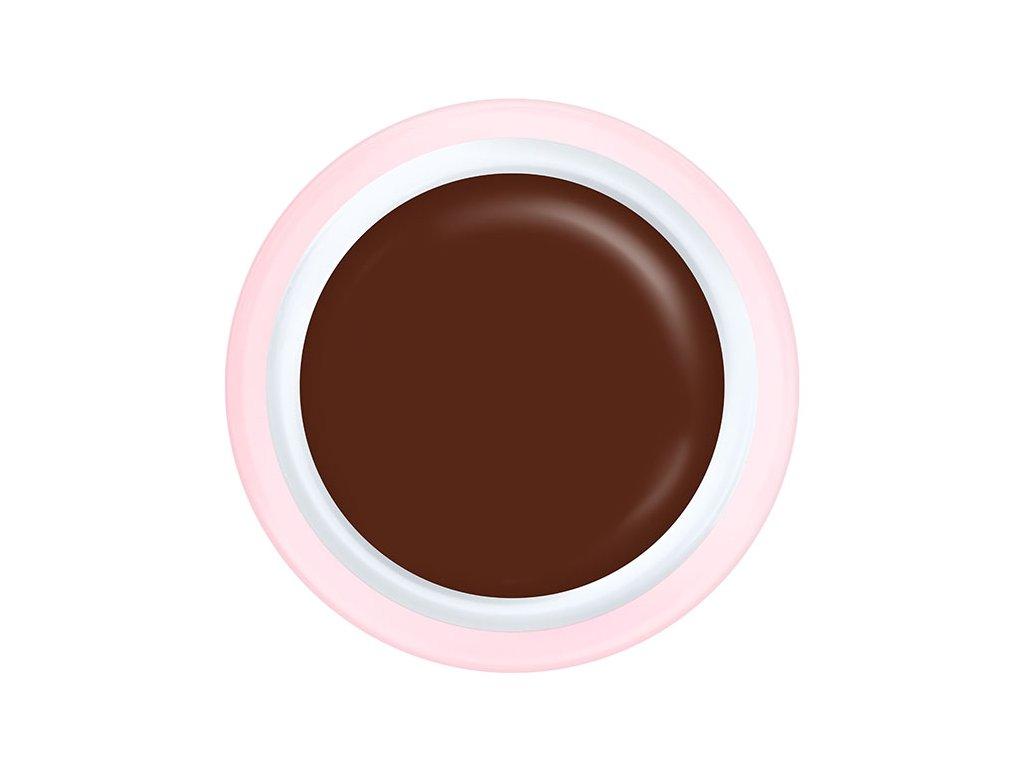 CH360 Brownie