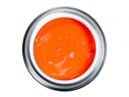 neon orange pasta nova