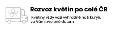Rozvoz po celé ČR