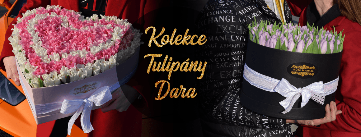 Nová Kolekce Tulipány Dara