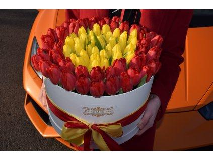 Tulips Box edition One