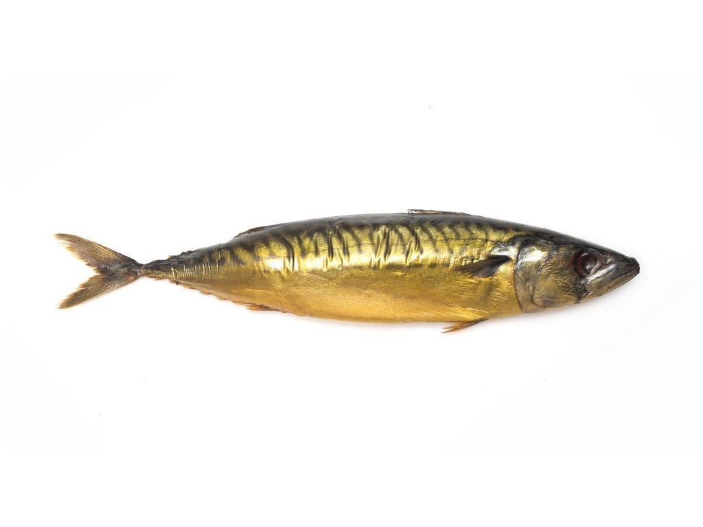 Uzená makrela
