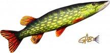 GABY polštář Štika obecná 80 cm