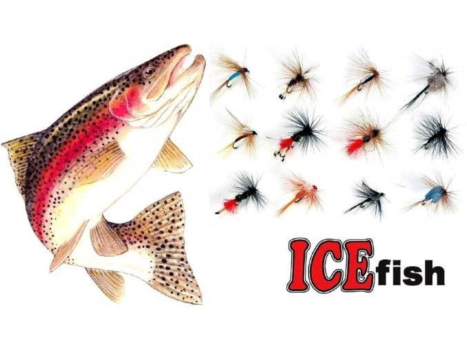 Mušky na pstruhy ICE Fish - sada FLY / 12 ks