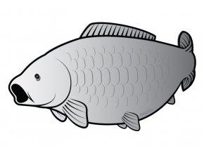 Delphin samolepka Kapr Silver