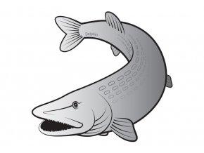 Delphin samolepka Štika Silver