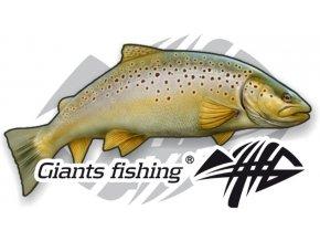 Nálepka malá Giants Fishing Pstruh